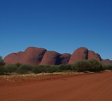 Kata-Tjuta, Docker River Road. by Lisa Evans