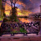 Cornmeal Creek Promenade-2849 by Barbara Harris