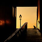 Alley Cat by Dick Butterer