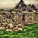 IRISH STONE HOUSE  by TIMKIELY