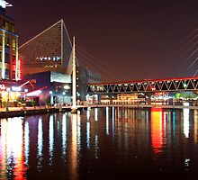 Baltimore Inner Harbor 2 by Rob Diffenderfer