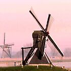 THE MILLS FROM DAWN AT SPRINGMORNING  by Johan  Nijenhuis