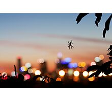 Spiderblur Photographic Print