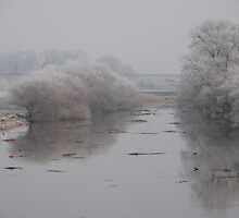 Frosty Morning on the Arun by Barry Goble