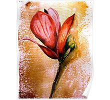 Flowers...Magnolia Poster