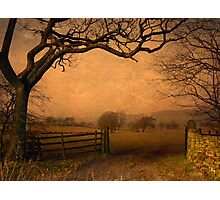 Wycoller Country Park Photographic Print