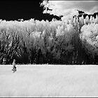 Patagonia Argentina by Douglas Barnes