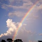 Rainbow & Rain by MMerritt