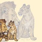lion family by Reet Rea