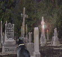 Pet Cemetery by Terri Chandler