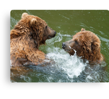 Grinning Grizzlies Canvas Print