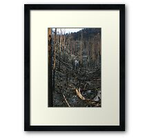 Steavenson falls the aftermath of black saturday Framed Print