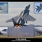 F-15C Eagle by Stephen Titow