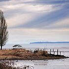 Drayton Harbour wildlife sanctuary by genielamb
