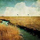 Salem Marshes by jodyangel