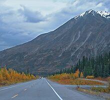 Parks Highway - Alaska by Dyle Warren