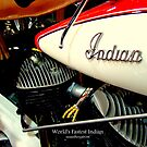 World's Fastest Indian by Susan Bergstrom