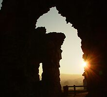 Denbigh Castle, N.Wales. UK by AnnDixon