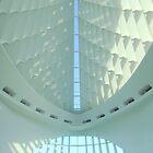 Milwaukee Art Museum III by paulineca