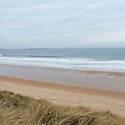 Northumberland Beach  by nathanw08