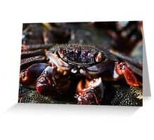 Cooked crab Greeting Card