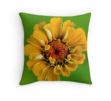 Sun in a dreary world.  Throw Pillow
