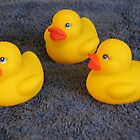 Baby Rubber Ducks by Linda Miller Gesualdo