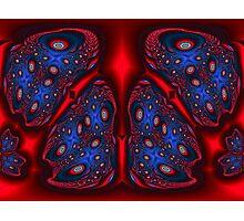 Lava Beetles Photographic Print
