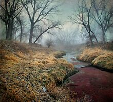 Foggy Morning by Paul  Threlkel