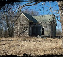 Abandonedd Homestead by MichiganGirl