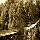 Capilano Suspension Bridge by sulee