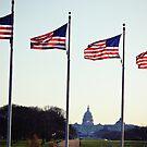American Pride by AuroraImages