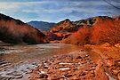 Virgin River Canyon by Jo Nijenhuis