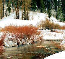 Idaho WInter by Donnie Shackleford