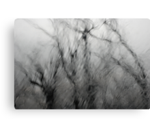 Windscream Canvas Print