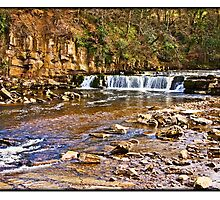 River Swale by Hertsman