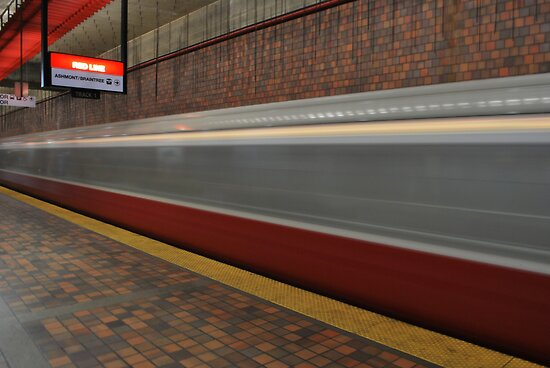 Alewife On The Red Line by AcePhotography