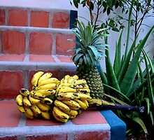 Bananas and pineapple in Honduras. by Catherine Sherman