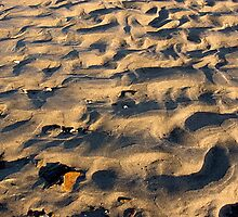Early Morning Sand Ripples, Third Beach, Middletown, Rhode Island by AaronLeclerc