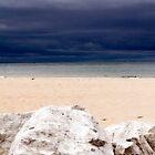 The Storm by Jen Orr