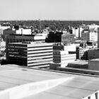 Grand Rapids Pano by Jen Orr