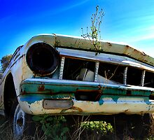 Hunk of Junk by for the love photography