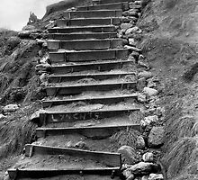 Bells Beach Steps by Wendy Mitchell