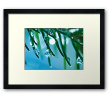 Icy Breeze.  Framed Print