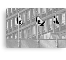 Black Flag Canvas Print