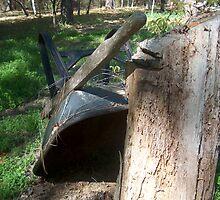 rusty wheel barrow by layveena