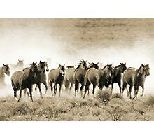 Thundering Hoofbeats Photographic Print
