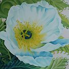 White Poppy by Kim Bender
