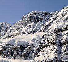 Frozen Rockies by Tiffany Vest