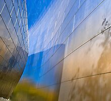 Walt Disney Concert Hall by Eyal Nahmias